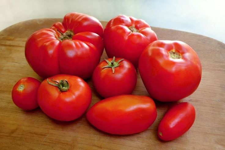Tomato sauce is used as a base for many dishes, including pasta, soups, pizza and Mexican foods. Tins and jars of tomato sauce line grocery store shelves, but making sauce from fresh tomatoes gives the finished product a more intense tomato flavor. Making your own sauce with fresh tomatoes also enables you to control the ingredients and avoid any...