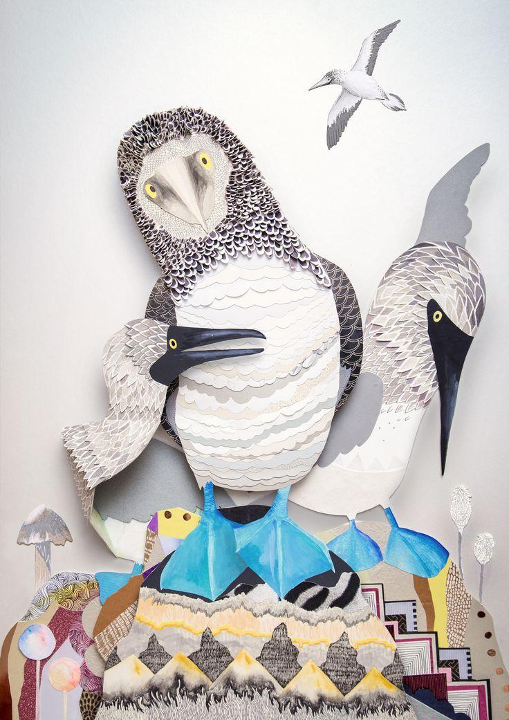 Boobies - Sam Pierpoint 3d paper cut illustration #sampierpoint #galapagos #booby