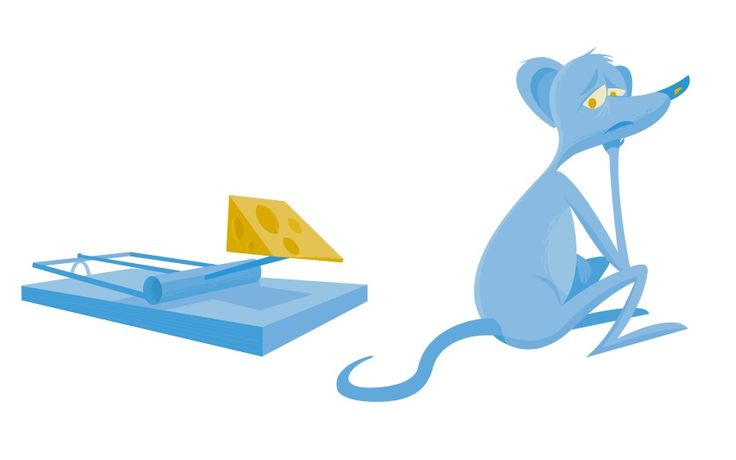 A mouse being tempted by a piece of cheese in a mousetrap