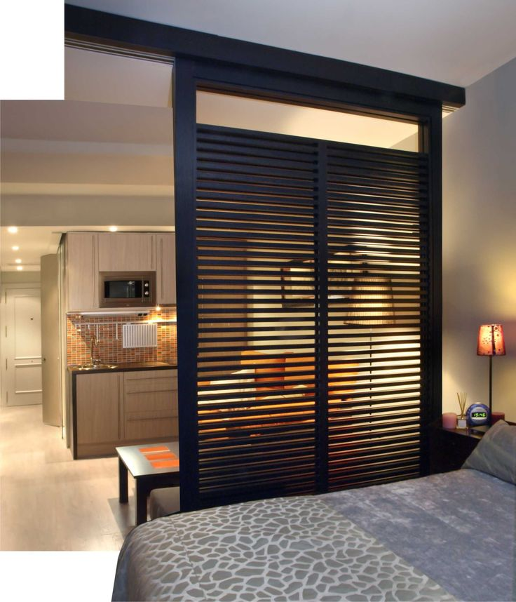Great room divider for a studio apartment