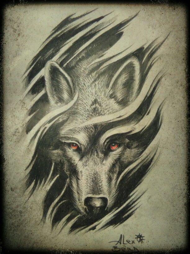 Волк. Красные глаза . Wolf. Red eyes.