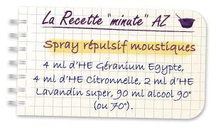 Spray Répulsif Moustiques