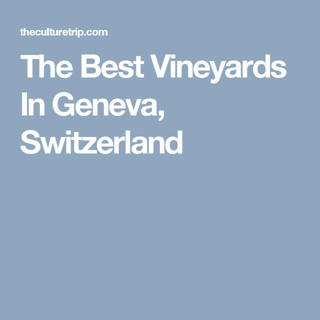 The Best Vineyards In Geneva, Switzerland
