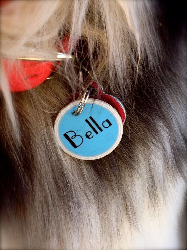 Custom dog tags. $5.95, via Etsy.