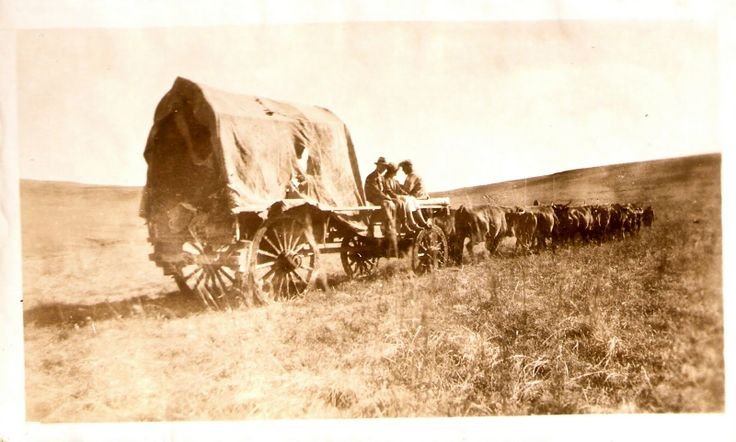Voortrekkers - Orignally Dutch decent - now know as 'Boere'. First World War. Here seen travelling in 'n Ossewa