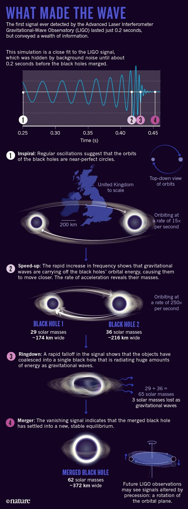 The black-hole collision that reshaped physics : Nature News & Comment
