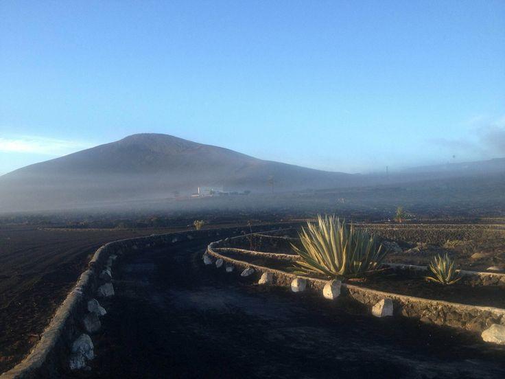 thesuites LANZAROTE Buenavista se encuentra en una finca de viñedos junto a un mar de lava, eco & slow style #canarias #lanzarote #volcanic #thesuites #nohotels