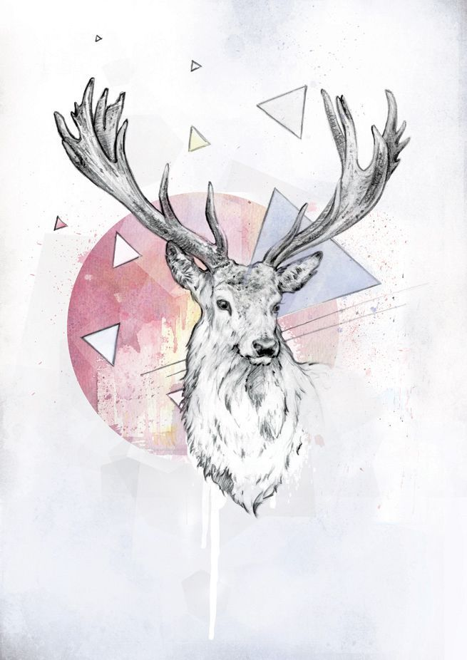 Deer Art  Hipster Pinterest