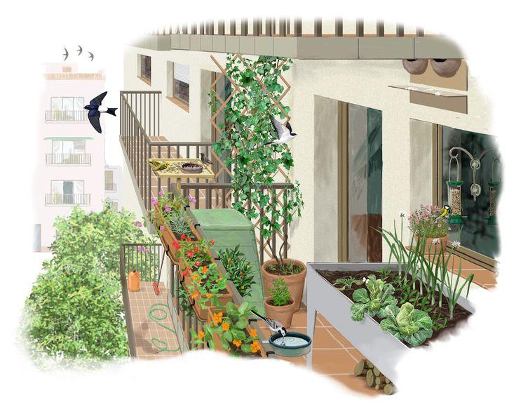 Como ajardinar un Balcón o Azotea para adecuarlo como #RefugiosWN de #fauna y #flora https://refugios.wnature.org/