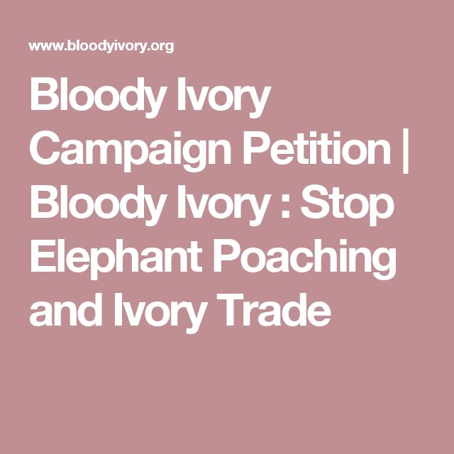 Bloody Ivory Campaign Petition   Bloody Ivory : Stop Elephant Poaching and Ivory Trade