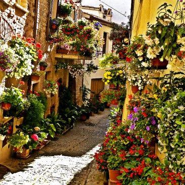 Цветочные улочки Спелло, Италия