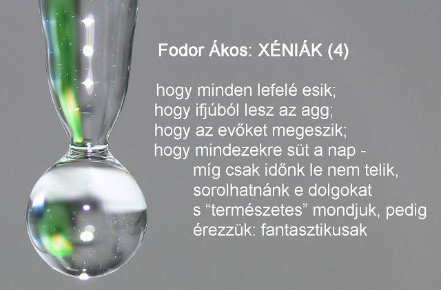 Fodor Ákos: Fodor Ákos: XÉNIÁK (4)