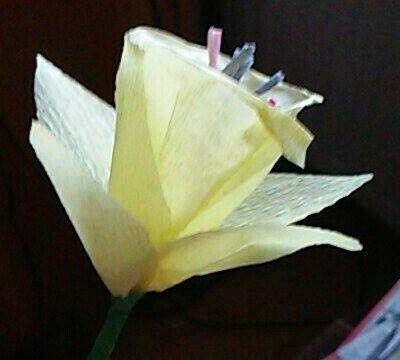 Papirvirág