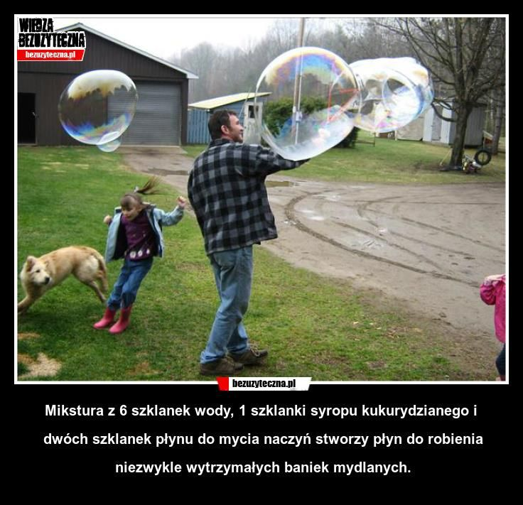 547645_473870512682033_1955275173_n.jpg (736×711)