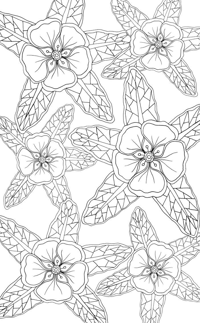 156 best flower coloring 2 images on pinterest coloring books