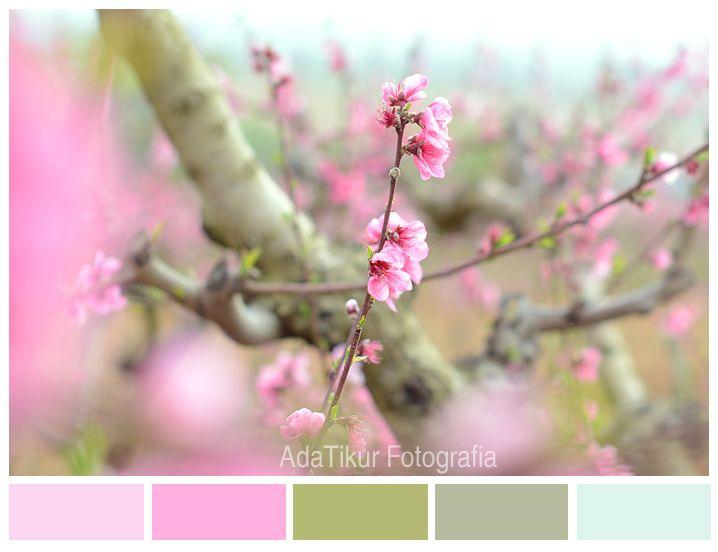 Flor de melocotón by adatikur.com