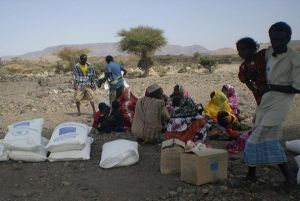 """Djibouti: For Displaced Women, Food Aid Shows They're """" Not Forgotten"""""""