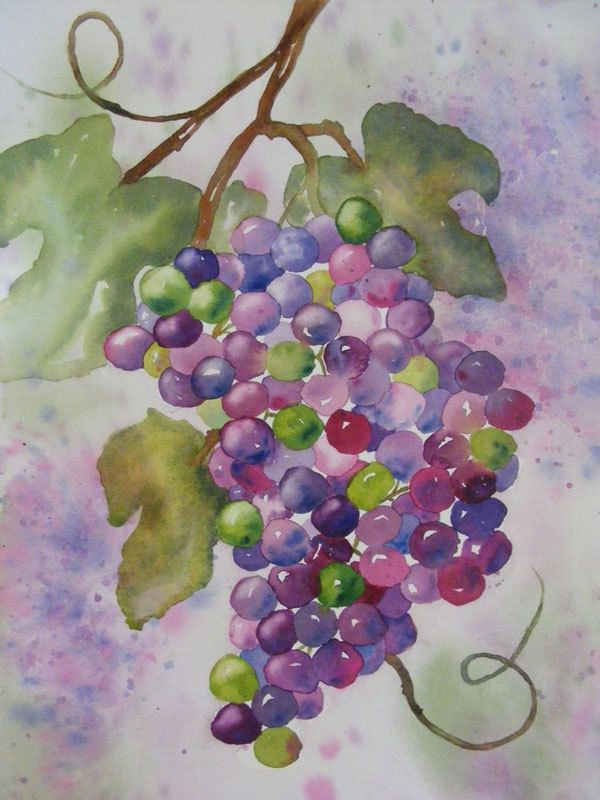 On the Vine-Original Watercolor Painting of Grapes. , via ...