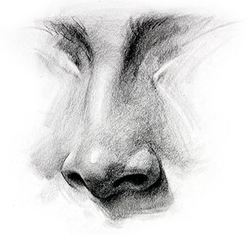 Nose Drawing, How to Draw a Nose - How to Draw Noses - Step by Step, -tutorial with thanks to proko, How to draw Face, Resources for Art Students , CAPI ::: Create Art Portfolio Ideas at milliande.com, Art School Portfolio Work