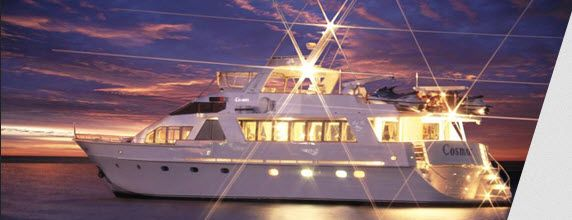 get best christmas party cruises sydney