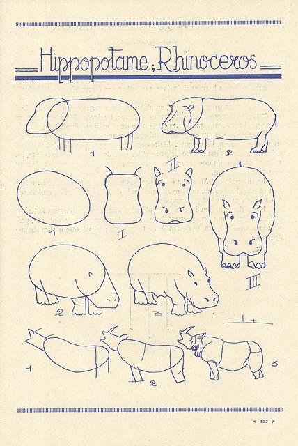 Como dibujar hipopótamos y rinocerontes
