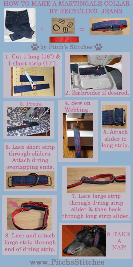 How to make a Martingale dog collar by recycling  blue jeans.