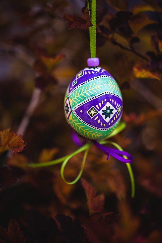 #09 Crown Purple Eggshell Dye