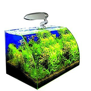 LINK: http://ift.tt/2eZvmm8 - LES 10 MEILLEURS AQUARIUMS DE OCTOBRE 2016 #maison #aquarium #aquariophilie #animalerie #poisson #salon #meubles #ameublement #design #eau => Guide d'achat: les 10 meilleurs Aquariums de octobre 2016 - LINK: http://ift.tt/2eZvmm8