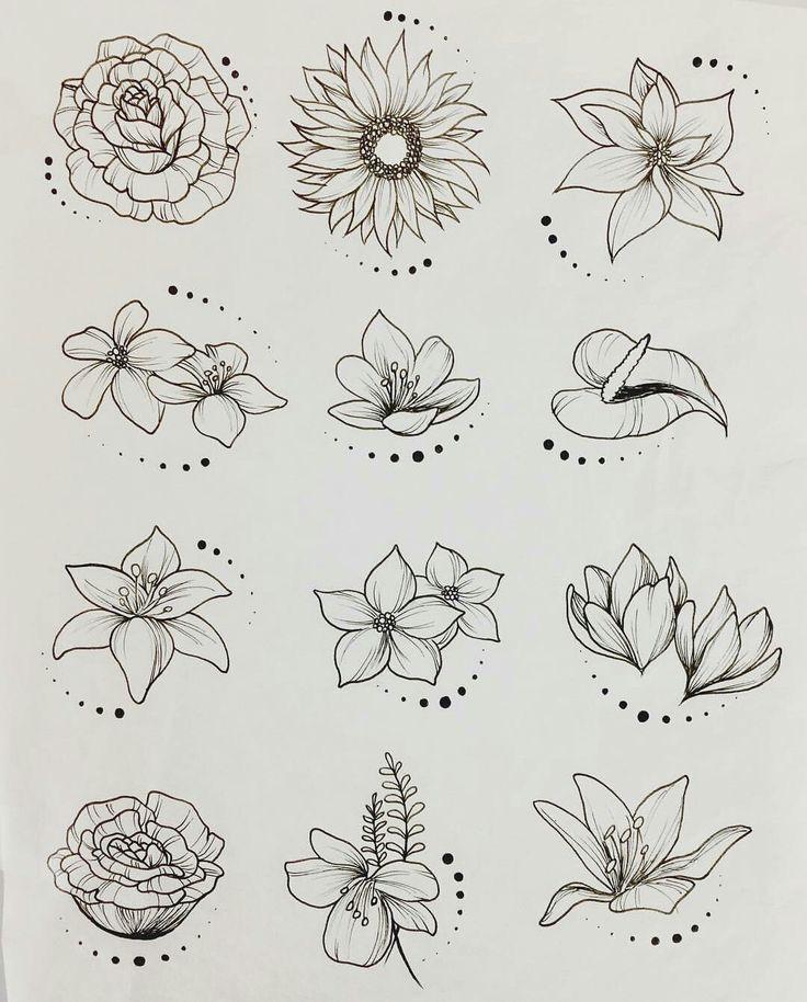Простые цветы рисовать картинки