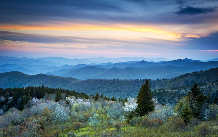 34 best the great smoky mountains images on pinterest for Privately owned cabins in the smoky mountains