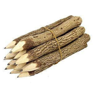 Amazon.com: Branch & Twig Graphite Pencils, 12-Pack, Approximately 5 Inches Long