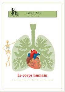 lapbook francais - corps humain