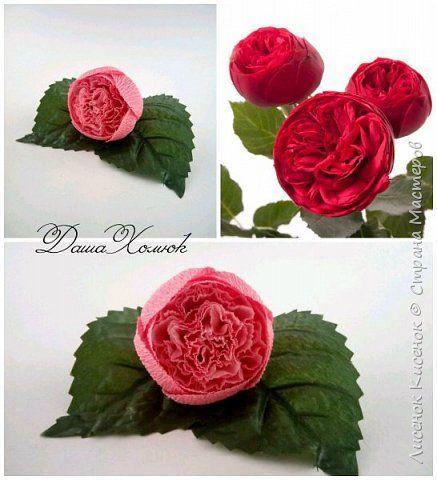 Мастер-класс Свит-дизайн Моделирование конструирование МК розы остинки Бумага гофрированная фото 1