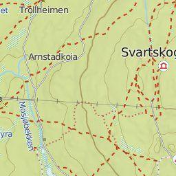 Rundtur på Mosjømarkas furumoer. Lengde: 13 km. Kart: brosjyren «Mosjømarka i Løten», utgitt 1996- revider 2004. Fra Grefsumkrysset følges …