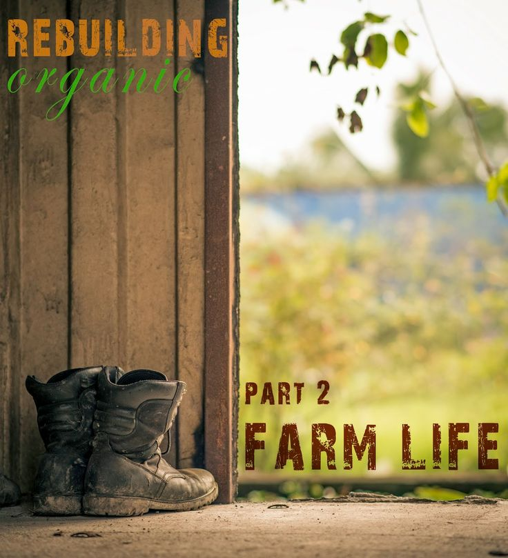 Building Organic - Part II - Farm life - Kevin Su Photography