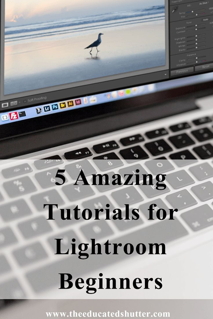 New to Lightroom? Need a little help getting the hang of it? Don't worry! I…