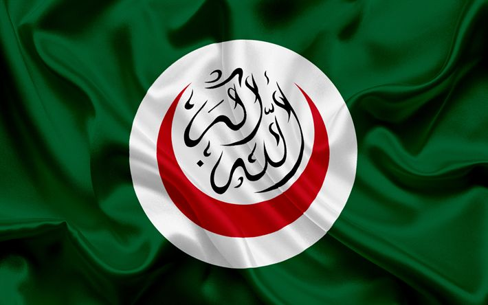 Descargar fondos de pantalla La bandera de la OCI, de la Organización de Cooperación Islámica, la organización de África, de seda verde bandera, emblema de la OIC