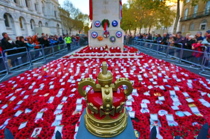 Poppies on Remembrance Day at the Cenotaph London. November 11th, 2012.