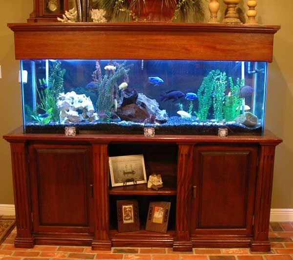 29 Best Home Aquarium Furniture Ideas To Beautify Your Room