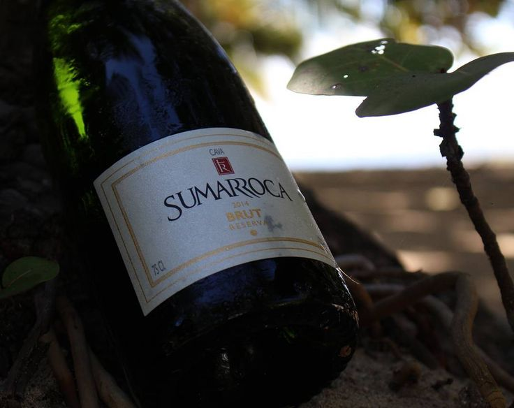 """Sumarroca Cava. en Instagram: """"Felíz domingo!! Esperamos que lo disfruten en familia.  #cava #burbujas #sumarroca #sumarrocard #slurp #grape #corks #corkscrew #penedes #reserva #bubbles  #sparkling #cava #brutreserva #cavalover #cavalovers"""