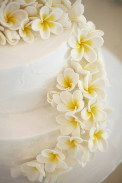 Simple white cake with flowers thrown at it