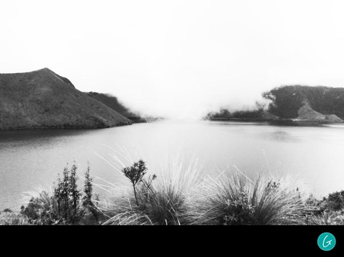 Laguna |