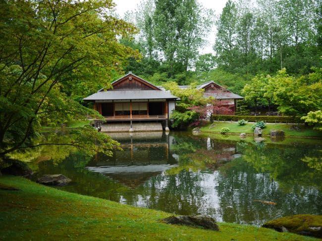 theeceremonie Japanse tuin Hasselt