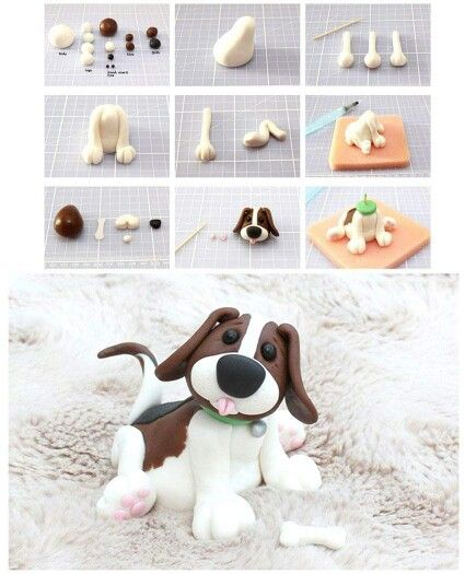 Cute Dog Pictorial