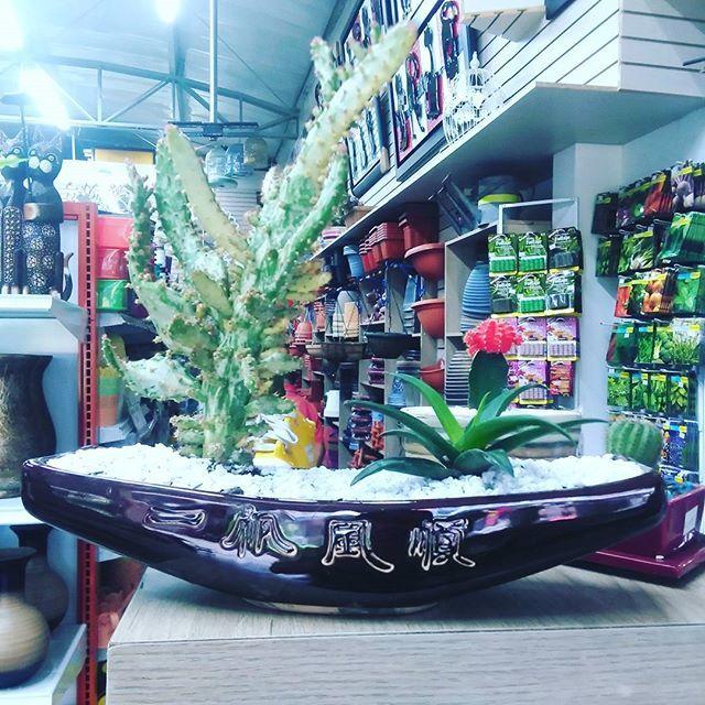 Somos comercializadores de productos de decoración para tu hogar y jardín. Compra en nuestra tienda online