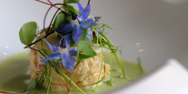 Chilled Cucumber and Horseradish Gazpacho with Crab Salad, Pickled Radish and Edible Flowers | Matthew Tomkinson