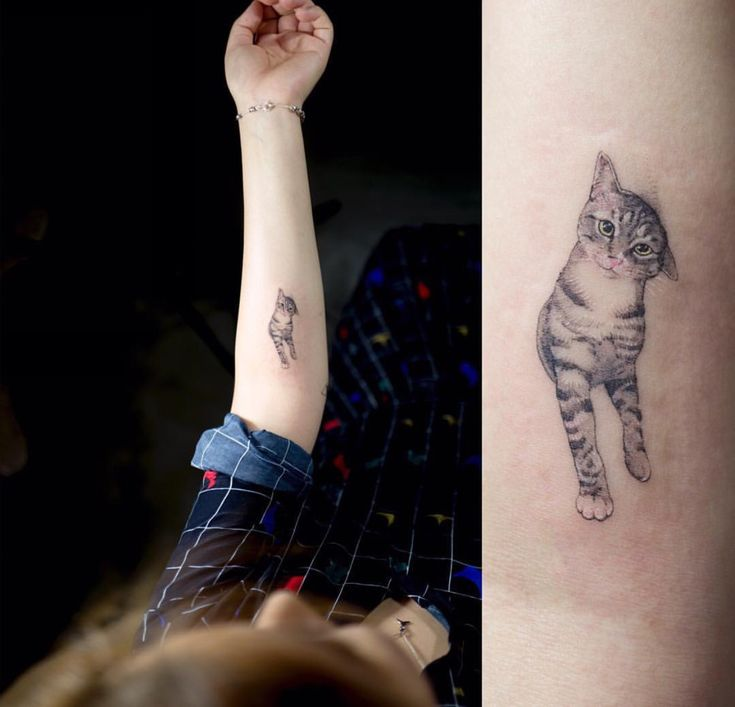 Cat tattoo                                                                                                                                                                                 More