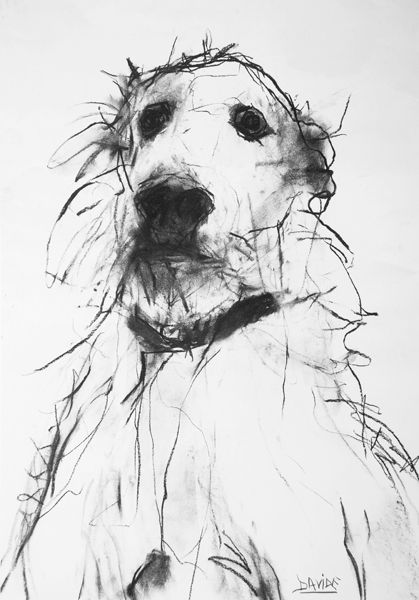 dog drawing by Valerie Davide