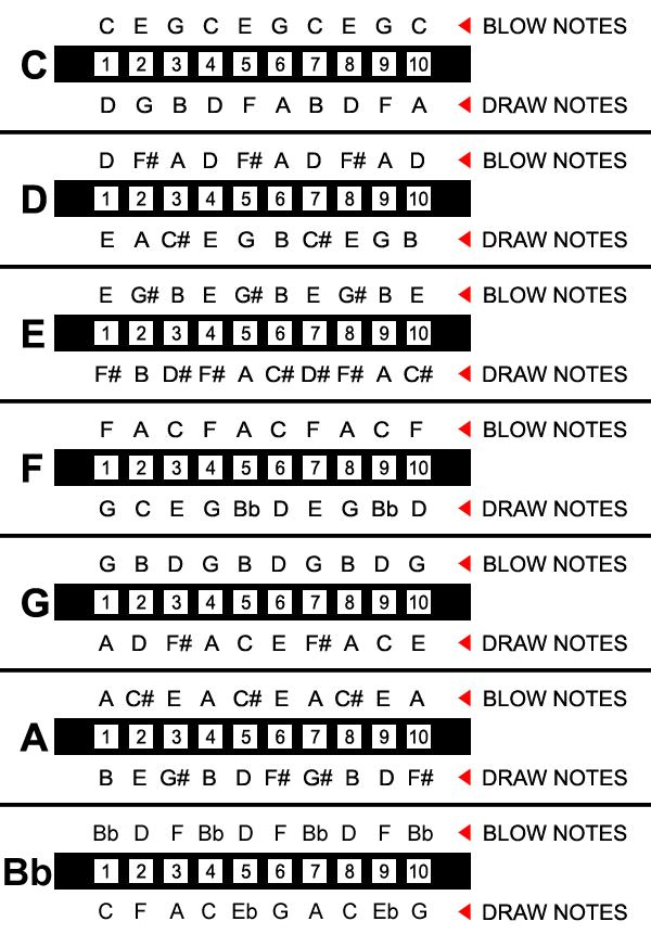 Harmonica notes layouts in different keys