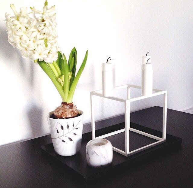Danish design ❤️ Nur Tray, Royal Copenhagen & By Lassen Kubus.